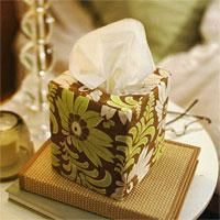 DIY  Tissue Holder  : DIY Sew a reversible tissue-box cover