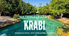 Einfach nur wunderschön! Diese Naturparadiese haben garantiert die wenigstens Touristen gesehen! Wer hier herkommt wird von der Schönheit Süd-Thailands regelrecht erschlagen! 3 absolute Insider-Tipps in der Region Krabi stelle ich dir hier genauer vor! http://flashpacking4life.de/nationalparks-krabi-sa-morakot-hot-stream-emerald-pool/