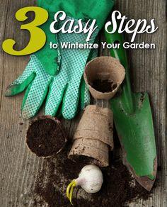 Winterize Your Garden in 3 Simple Steps