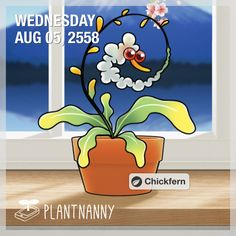 Say hello to my plant! It has absorbed 598 oz of water. Get yourself a plant at http://fourdesire.com/outer_link?url=http://itunes.apple.com/app/id590216134&l=en_TH&m=55C1BAAA