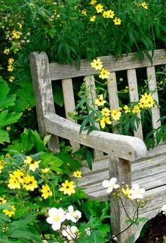 (via Pin by •✿•~ Cora ~•✿• on ~•✿•~ Dream Garden.. | Pinterest)