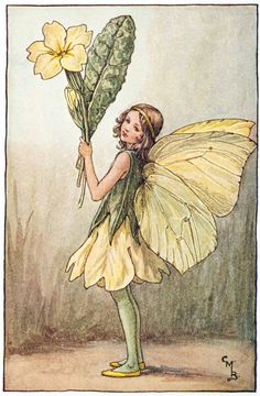Illustration for the Primrose Fairy from Flower Fairies of the Spring. A girl fairy stands facing left holding a bunch of primroses.- Cicely Mary Barker  300.1.10 FF Spring 10 1923
