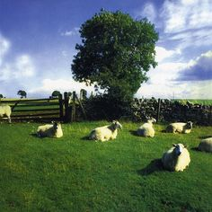 KLF chill out listening to it still as good as ever
