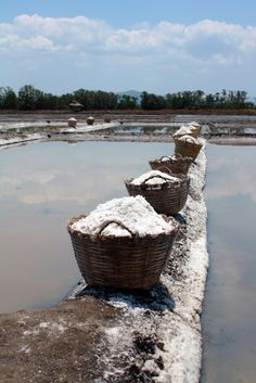 harvesting salt, Bolinao,  Pangasinan,  Philippines
