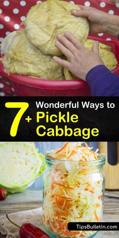 Create your own quick pickled cabbage and pickled red cabbage recipes using tasty ingredients like apple cider vinegar and peppercorns. These recipes transform plain cabbage into a sauerkraut side dish and taste amazing on tacos and hot dogs. #howto #pickle #cabbage Types Of Cabbage, Red Cabbage Recipes, Pickled Red Cabbage, Pickled Okra, Cabbage Tacos, Napa Cabbage, Fermented Cabbage, Healthy Vegan Snacks, Fish Sauce