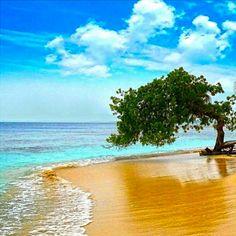 playas morrocoy - Buscar con Google
