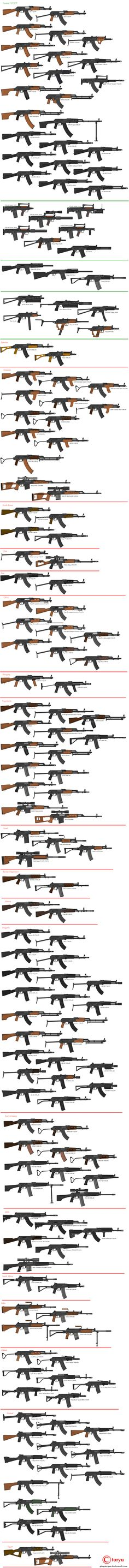 Kalashnikov AK 47 and Variants from Russia and the rest of the world.