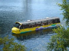 Hippo buses in Toronto, Ontario, Canada are amphibious tour buses, taking passengers to sights on land  and water.