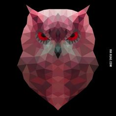 Polygon Owl, what do you think?