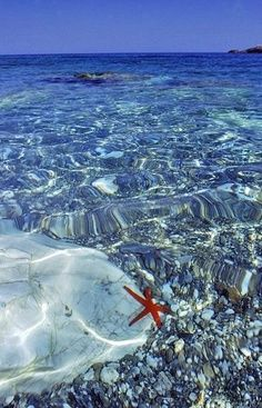 Clear blue water! | best from pinterest