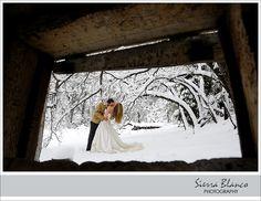 Trash the dress in the snow  http://www.sierrablancophoto.com/2011/02/gina-and-matt-trash-the-dress.html