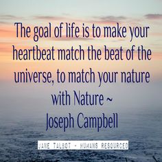 """Do you know how to match your heartbeat to the beat of the Universe? """"The goal of life is to make your heartbeat match the beat of the Universe, to match your nature with Nature"""" ~ Joseph Campbell #ArtOfLiving #SpiritOfAdventure #Adventure www.janetalbot.com"""