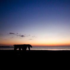 #sunset #travel #tramonto #soundofsilence #beach #beachlife