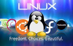 UtakAtikAsik: Cara Bikin OS Linux di Flashdisk