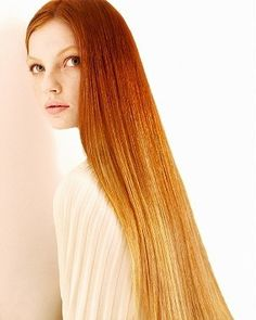 Gingy ombre