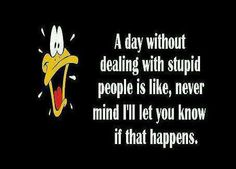 dumb people quotes funny | Funny Facebook Status: A day without stupid people funny facebook ...