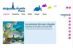 Aquarium de Paris - stephanie_vieuxble.com