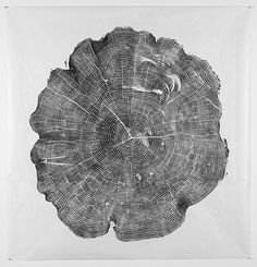 Prints from tree trunks...how cool. @Maggie Allen we need to figure out a way to do this and frame for your house!!