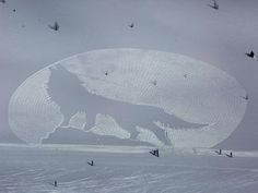 Snowshoe Art A ski resort in Alberta, Canada created large-scale art using snowshoes and a compass. The images could only be seen from an aerial view and sometimes took up about 11 hours to make. The artist, Simon Beck, has been making these designs for more than 10 years.