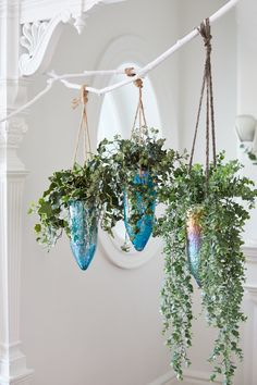 Un décor Hygge avec des plantes suspendues . // Hanging plants on a branch.