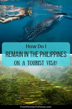 If I Wish to Stay in the Philippines on a Tourist Visa for Longer Than the Initial 30 Days, What's Next? What do I need to know so I can extend my stay in the Philippines beyond the visa-waiver period of 30 days? Find out all you need to know about extending your tourist visa for the Philippines in this article.  via @www.pinterest.com/97eb8cb051d4f5840c337b46edd6b1 I Need To Know, 30 Day, Philippines, Wish, Period, Travel, Viajes, Destinations, Traveling