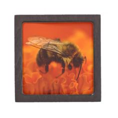 Bee on Orange Flower Gift Box Gift Boxes For Sale, Belt Buckles For Sale, Flower Places, Flower Belt, Flower Jewelry, Jewelry Box, Printed Napkins, Pillow Sale, Orange Flowers