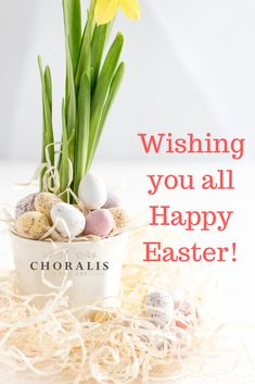 Wishing you all Happy and Peaceful Easter! Enjoy you time with Family and Friends. Happy Easter, Wood Art, Wish, Friends, Food, Happy Easter Day, Amigos, Wooden Art, Essen