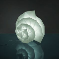 Leave it to Issey Miyake to merge light and textile in such a beautiful way....the nautilus shell as example of the Golden Mean.