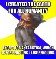 Penguins are the Best