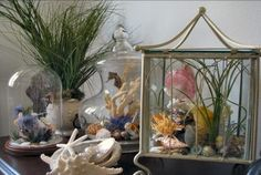 Ways to decorate your home with seashells