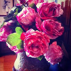 Garden roses from Anne's farm on the mantle Coffee Table Flowers, Garden Roses, Mantle, Plants, Instagram, Cape, Flora, Cloak, Plant