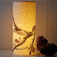 A Northern Light designs beautiful modern lighting using hand-drawn illustrations printed onto parchment paper. - http://www.anorthernlight.net/paper-lamps.html