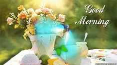 Good Morning Coffee Gif, Butterfly On Flower, Flower Pots, Flowers, Mornings, Dapper, Butterflies, Good Morning Funny, Flower Vases