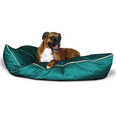 Durable fabric Majestic Pet Large Pet Bed, 35' x 46' x 6' Green *** Special dog product just for you. See it now! : Pet dog bedding