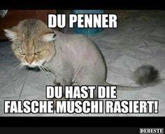 Du,,, | DEBESTE.de, Lustige Bilder, Sprüche, Witze und Videos