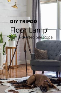 You can make a DIY Tripod Floor Lamp using an old telescope and adding a light kit and shade. This lamp looks just like the tripod floor lamps found in stores. - Tripod Floor Lamps - Ideas of Tripod Floor Lamps Decor, Tripod Floor, Tripod Floor Lamps, Affordable Decor, Lamp, Diy Tripod, Home Decor, Floor Lamp, Furniture Projects