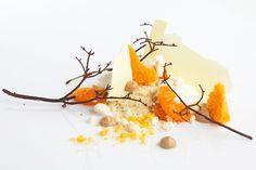 Chef Ryan Clift. Mandarin cheesecake.  The Art of Plating