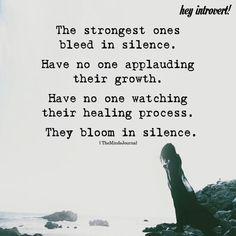 Bloom in silence