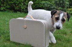 nový školní kufřík! Hurá!