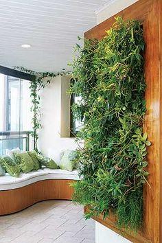 10 soluções criativas para ter verde em casa