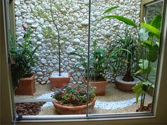 Small space herb garden ideas small indoor garden indoor small garden ad garden ideas with pebbles Basement Window Well, Basement Windows, Egress Window, Short Plants, Patio Interior, Interior Design, Modern Garden Design, Window Design, Winter Garden