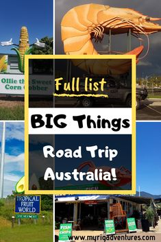 There's something about those iconic, novelty 'BIG Things' that people in Australia just love! Have a look at our full list for your own road trip. Bundaberg Rum, Roadtrip Australia, Western Australia, South Australia, Travel Inspiration, Travel Ideas, Local Attractions, Gap Year, Family Adventure