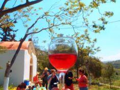 Idaia wine from Crete 2021 Mykonos Greece, Crete Greece, Athens Greece, Holiday News, Wine Tasting Near Me, Crete Holiday, Wine Coolers Drinks, Sonoma Wineries, Sangria Wine