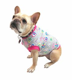 This mid-weight T-shirt is custom fit for your broad chested frenchie, for your Valentines Day Sweetheart. Description -Multicolored Hearts print (Grey backgr