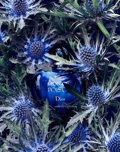 Dior. #perfume Get this perfume for just $14.95/month www.scentbird.com