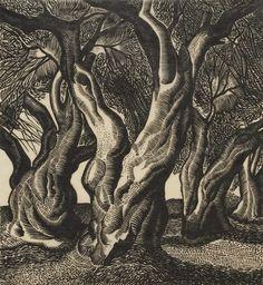 Τάσσος (Αναστάσιος Αλεβίζος)-Κορμός, 1938 Anastasia, Architecture People, Art Forms, Printmaking, Greece, Birds, Colours, Painters, Artist