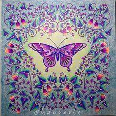 Fly, butterfly! In a Magical Jungle. #butterfly #borboleta #selvamagica…