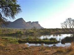 Landscape on the Entabeni Safari Conservancy, private game preserve, South Africa by Ronald J. Anderson