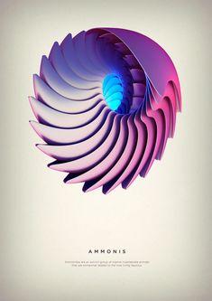 Ammonis - Digital Art by Črtomir Just