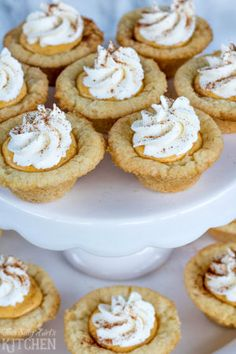 Pumpkin Cream Sugar Cookie Cups, sweetened cream cheese flavored with pumpkin and cinnamon in sugar cookie cups, garnished with fresh whipped cream! Pumpkin Cookies, Pumpkin Dessert, Pie Dessert, Pumpkin Cheesecake, Holiday Cookies, Köstliche Desserts, Delicious Desserts, Dessert Recipes, Plated Desserts
